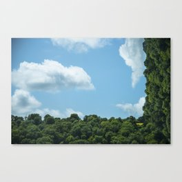 Metamorphisms Canvas Print
