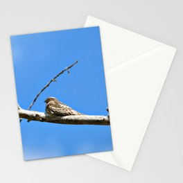 Common NightHawk Stationery Cards