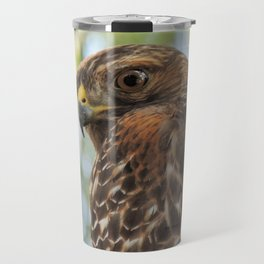 Young Red-Shouldered Hawk in a Desert Willow Travel Mug