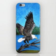 Bald eagle  2 iPhone & iPod Skin