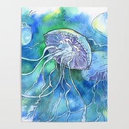 Meduse Poster