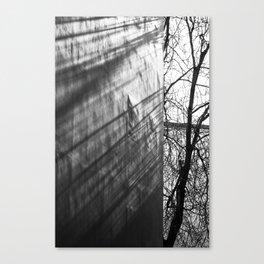Tree shadows Canvas Print