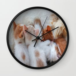 Little Balls of Fur! Wall Clock