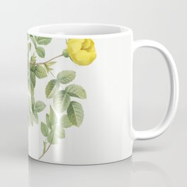 Sweetbriar Rose also known as Eglantine Rose (Rosa eglanteria luteola) from Les Roses (1817-1824) by Coffee Mug