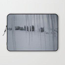 February: 2 Laptop Sleeve