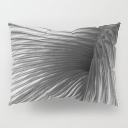 Abstraction Extraction Pillow Sham