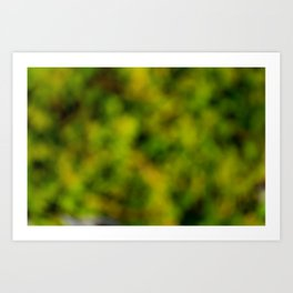 Natural Bokeh Camo Art Print