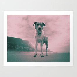 Dog on beach. What's your name? Art Print