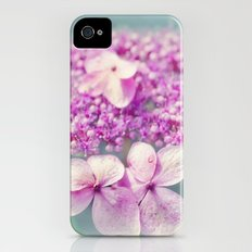 Sweet Summer iPhone (4, 4s) Slim Case