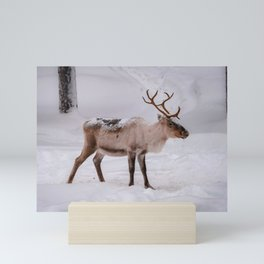 Little reindeer in the snow Mini Art Print