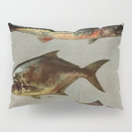 Illustrated Grocers Colorful Saltwater Game Fish Identification Chart Pillow Sham