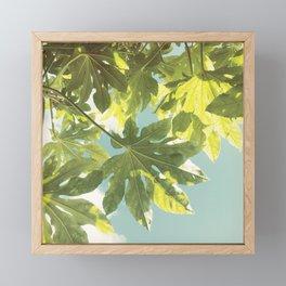Fig Leaves Framed Mini Art Print