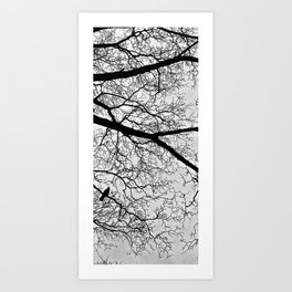 Natural Fractal and the Crow Art Print