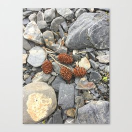 River Stone Tiny Cones Canvas Print