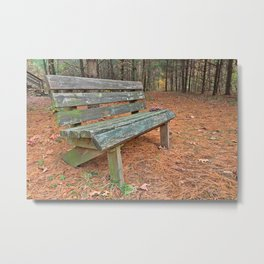 North Point Pine Forest Trail Metal Print