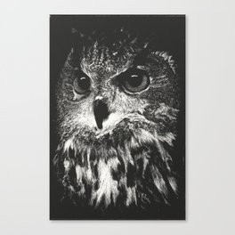 Owl Scratchboard Canvas Print