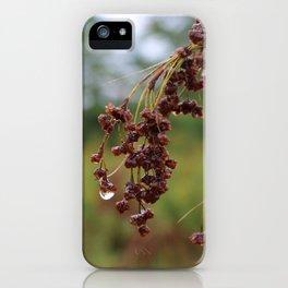 Rain 3 iPhone Case
