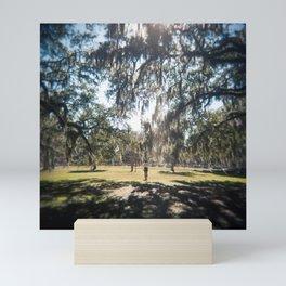 Sunshine under Savannah's Spanish Moss - Film Photograph Mini Art Print