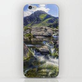 Tryfans Treasures iPhone Skin