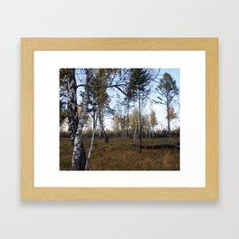russia1 Framed Art Print