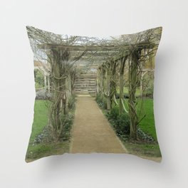 A Winding Way Throw Pillow