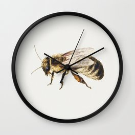 Bee from Sheet of Studies of Nine Insects (1660-1665) by Jan van Kessel Wall Clock