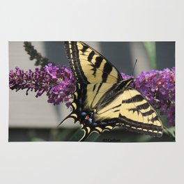Western Tiger Swallowtail in the Shade Rug