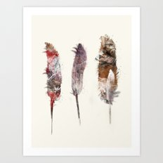 peace feathers Art Print