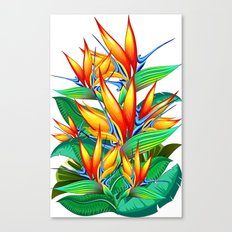 Bird of Paradise Flower Exotic Nature Canvas Print