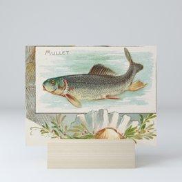 Vintage Atlantic Mullet Fish (1889) Mini Art Print
