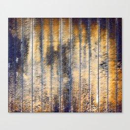 Blank texture Canvas Print