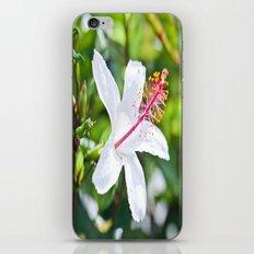 White Hibiscus iPhone & iPod Skin