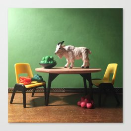 The Mountain Goat + The Kitchen Table Canvas Print