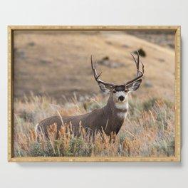 Mule Deer #01 Serving Tray