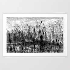 Walking in Shades of Gray Art Print