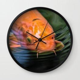 Koi Orange Carp Fish Wall Clock