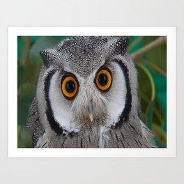 aztec owl  , aztec owl  games, aztec owl  blanket, aztec owl  duvet cover Art Print