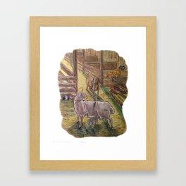 Popcorn the Lamb 3 Framed Art Print