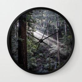 Muir Woods Crepuscular Rays Wall Clock