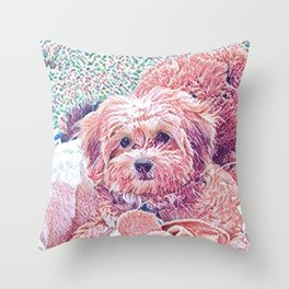 Copper the havapookie as a puppy Throw Pillow