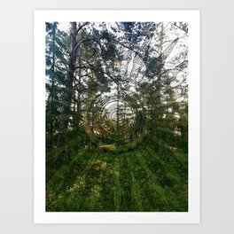 Spell of the forest fairies Art Print