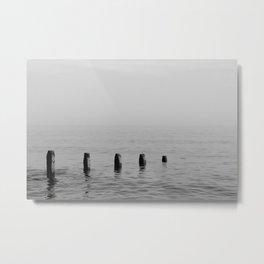Five Stumps - Black and White Metal Print