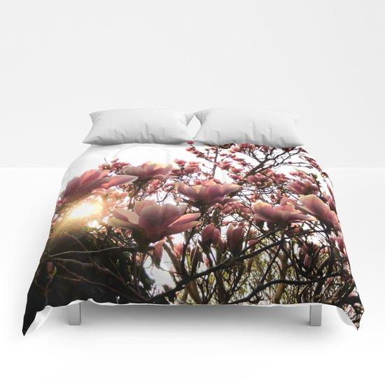 Magnolia Sunset Comforters
