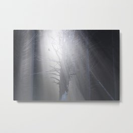 Sunrise in the Trump Forets. Metal Print