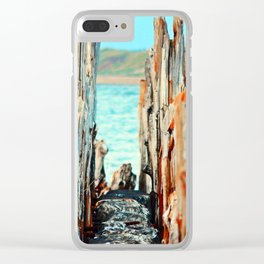 The Gap in the Pillars Clear iPhone Case