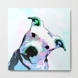 Pit bull - Puzzled - Pop Art Metal Print