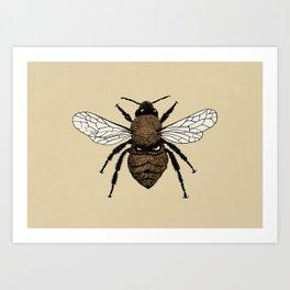 Bumblebee illustration Art Print