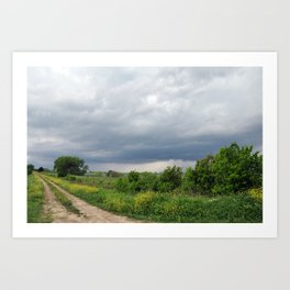 Navarro County, Texas #1 Art Print