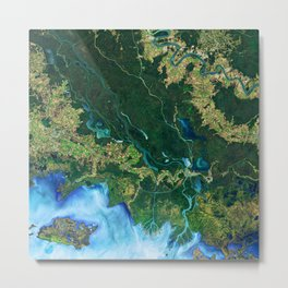 132. Winds Trigger Pond Growth Metal Print