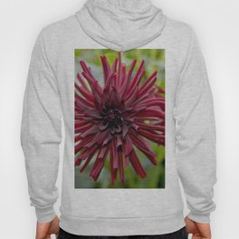 RED DAHLIA DREAM Hoody
